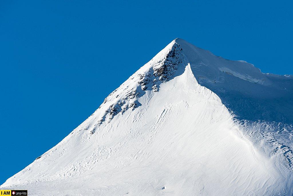 Piz Palü (3901m)